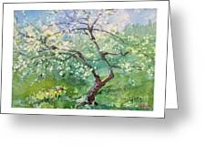 Spring Plum Greeting Card