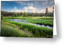 Spring River Valley Greeting Card