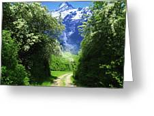 Spring Road To Mountains Greeting Card