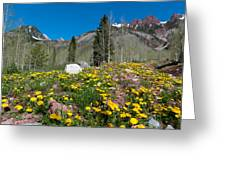 Spring Rocky Mountain Landscape Greeting Card