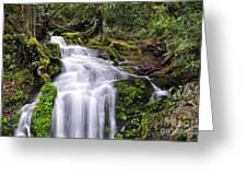 Spring Season Cascade Greeting Card
