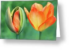 Spring Siblings Greeting Card