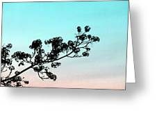 Spring Silhouette Greeting Card