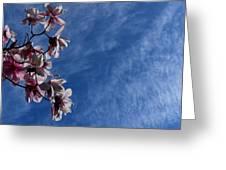 Spring Sky Greeting Card