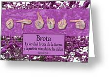 Spring Spanish Greeting Card