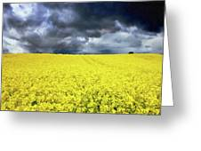 Spring Storm In Australia Greeting Card