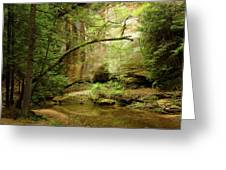 Spring Stream Greeting Card