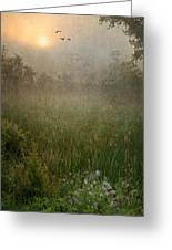 Spring Sunrise In The Valley Greeting Card by Dale Kincaid