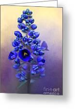 Spring Sunshine On Blue Greeting Card