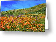 Spring Superbloom In Walker Canyon Greeting Card