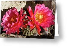 Spring Surprise Greeting Card