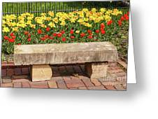 Spring Surrounds The Bench Greeting Card