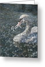Spring Swan Greeting Card