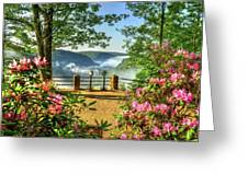 Spring Time At Colton Point State Park Greeting Card