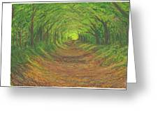 Spring Tree Tunnel Greeting Card