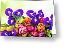 Spring Tulips And Irises Greeting Card