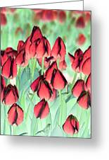 Spring Tulips - Photopower 3012 Greeting Card