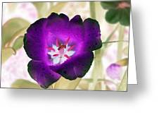 Spring Tulips - Photopower 3028 Greeting Card