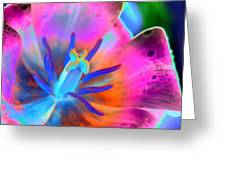 Spring Tulips - Photopower 3127 Greeting Card