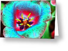 Spring Tulips - Photopower 3131 Greeting Card