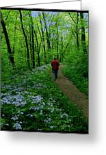 Spring Walker Greeting Card