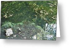 Spring Water At The Grotto Greeting Card