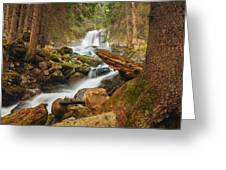Spring Waterfall Greeting Card