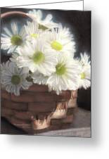 Spring White Daisies Greeting Card by Melissa Herrin