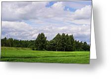 Spring Windy Day On Green Field Greeting Card
