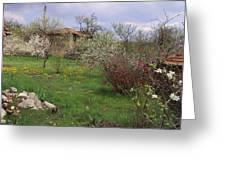 Spring Yard Greeting Card