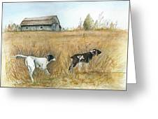 Springfield Bird Dogs Greeting Card