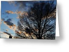 Springfield Evening 2013-02-14 Greeting Card