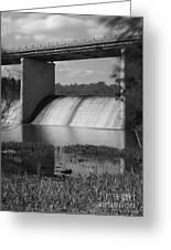 Springfield Lake Dam Grayscale Greeting Card