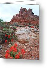 Springtime At Arches National Park Greeting Card
