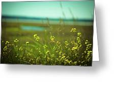 Springtime At The Beach Greeting Card