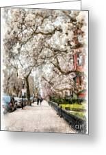 Springtime Boston Back Bay Greeting Card