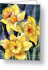 Springtime Daffodils Greeting Card