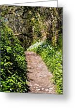 Springtime In Dorset Greeting Card