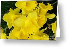Springtime In Ireland Greeting Card