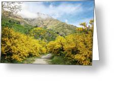 Springtime In New Zealand Greeting Card