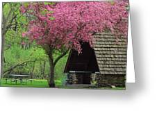 Springtime In The Park Greeting Card by Lori Frisch