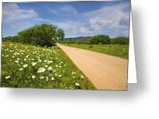 Springtime On The Loop Greeting Card