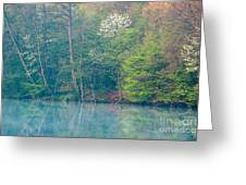 Springtime Reflection Greeting Card