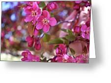 Springtime Romance Greeting Card