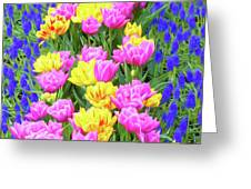 Springtime Tulips 01 Painterly Effecy Greeting Card