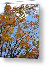 Sprinkles Of Autumn Greeting Card