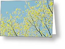 Sprint Blossom  Greeting Card