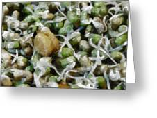 Sprouts And Other Healthy Food Greeting Card