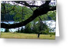 Spruce Knob Silhouette Greeting Card