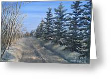 Spruce Trees Along A Snowy Road  Greeting Card